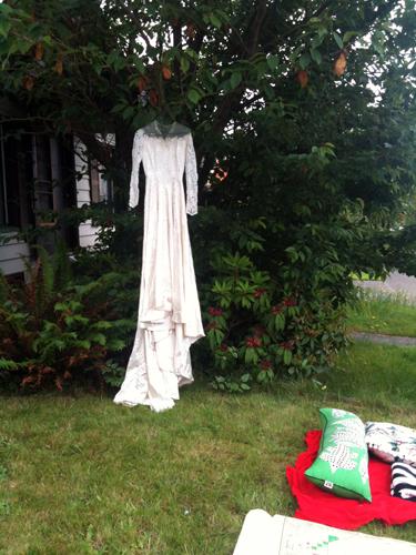 Wedding dress in tree