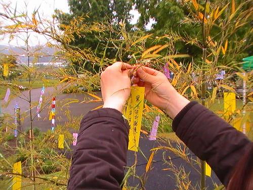 花咲かフェア in さがえ 2012