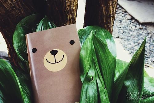 002-bear