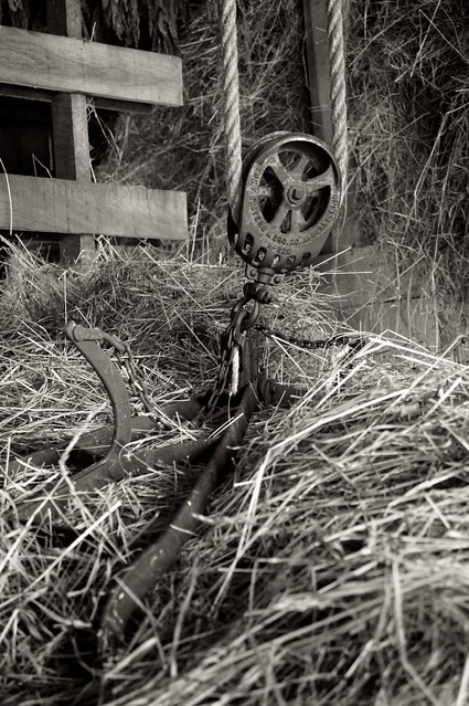 Loading the Hay 2