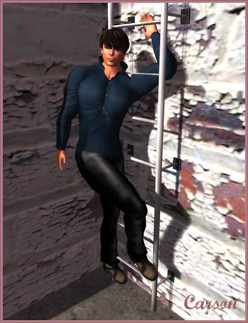 Silhouette Fashion - Shirt and Pants, Latreia - Sive Black/Brown Shoes