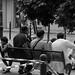 2 giugno 2012 - In viaggio per l'Emilia Romagna - Cavezzo