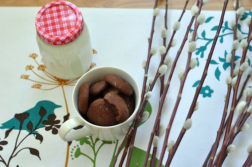 Cocoa Cookies with cayenne pepper
