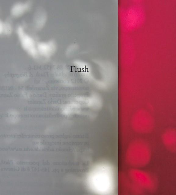 Virginia Woolf, Flush. Una biografia. A cura di Chiara Valerio; nottetempo, Roma 2012. progetto grafico di Dario e Fabio Zannier. recto del colophon (part.), 1