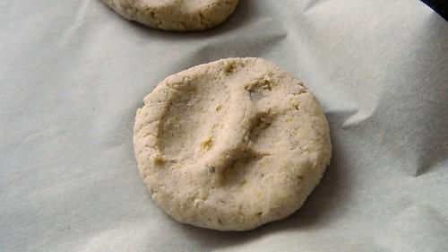 Gluten-Free Pumpkin Dog Biscuits 5