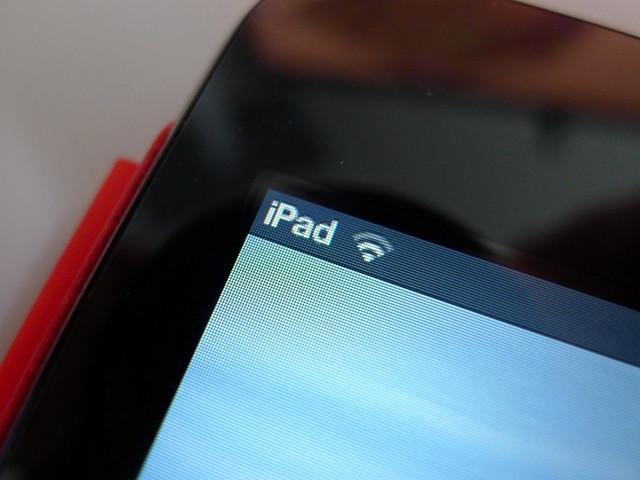 iPad mini Display