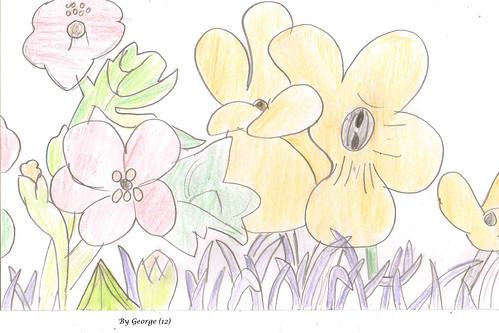 bloom -  g