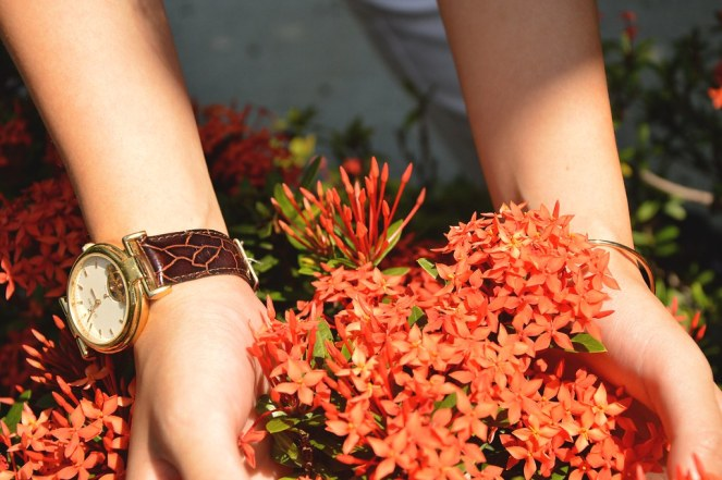 orange flowers, flowers pictures, vintage leather watch