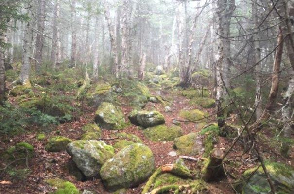 11-Rainbow-Trail-Climb