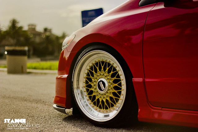 Red gbbs_2