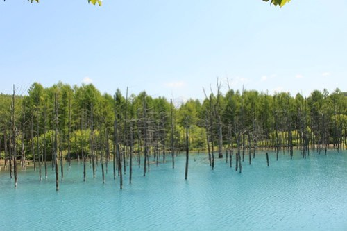 blue pond-3