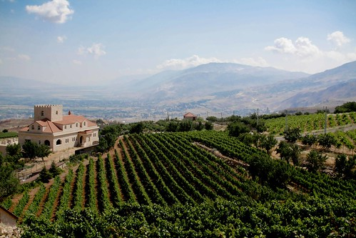 Brunch and Bekaa-16