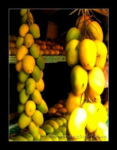 Mangoes, Guimaras Island