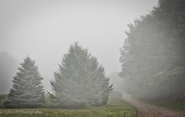 2012_Aug_08_Morning Fog_006