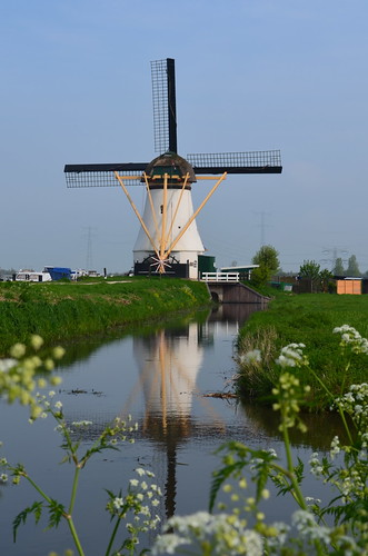 Biking to the Kinderdijk