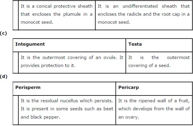 NCERT Solutions Class 12 Biology Chapter 2 : Sexual Reproduction in Flowering Plants 32