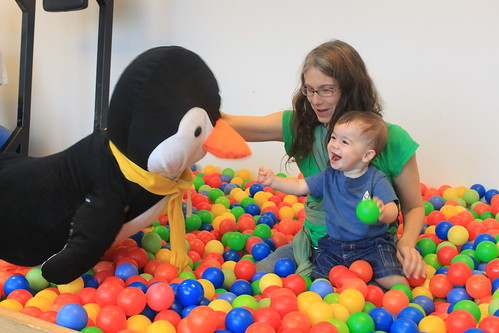 New York - Google - Penguin, Vicky, Sagan in Ballpit 2 (By Ryan Somma)