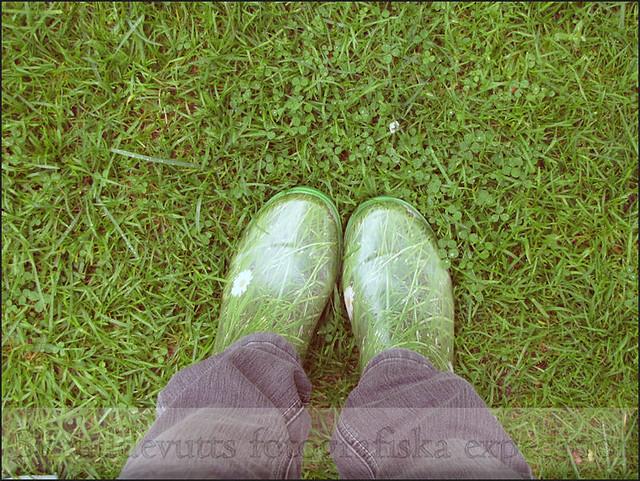 Grönt i grönt