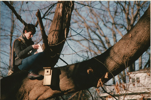 Reading in Trees