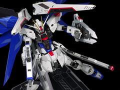 Metal Build Freedom Review 2012 Gundam PH (104)