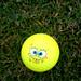 sponge bob golf ball