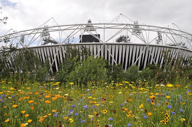 2012-08-03 Olympics (7)