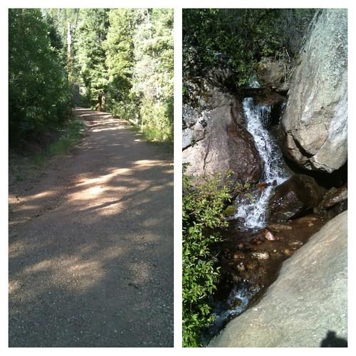 Catamount Falls trail