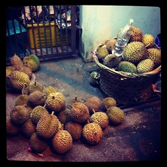 Take your pick - durians!!!!