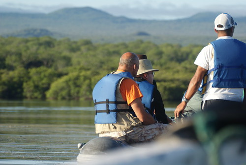 You can go by dinghy into the mangroves in Galápagos in search of wildlife - such as turtles, sharks and herons. photo by Ben Tavener.