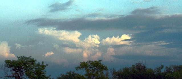 Cumulus Treeline
