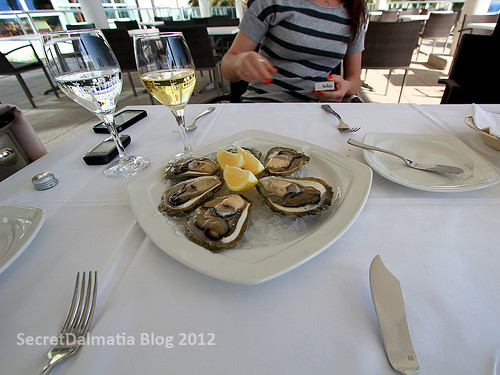 Oysters of Ston