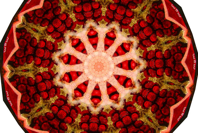 pomegranate kaleid 2