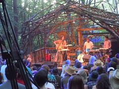 Bowerbirds, Woods Stage