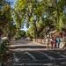 Los Rios Street-August 27, 2012-6