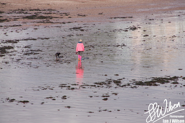 Dog Walker in Pink – Daily Photo (29th December 2012)