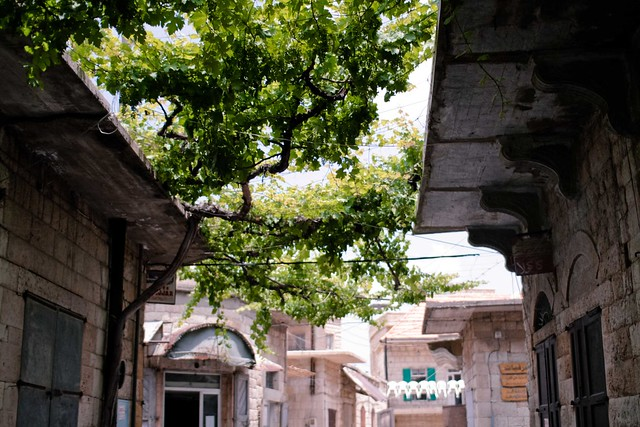 Douma2012-8619