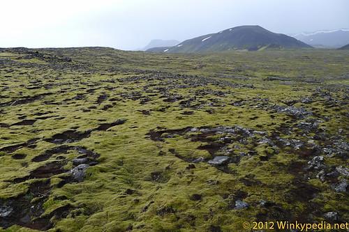 A hike across the lava field towards the volcano