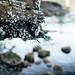 Deep-Cove-Photowalk_MG_2602-Edit