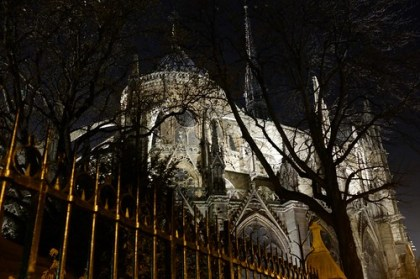 notre-dame at night