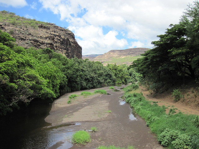 Picture from the Menehune Ditch