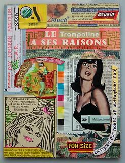 """Relationship XXXIV - """"Le Trampoline a Ses Raisons"""""""