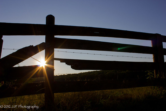 2012_Jul_22_Fences_030
