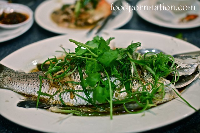 Barramundi w ginger and shallot sauce