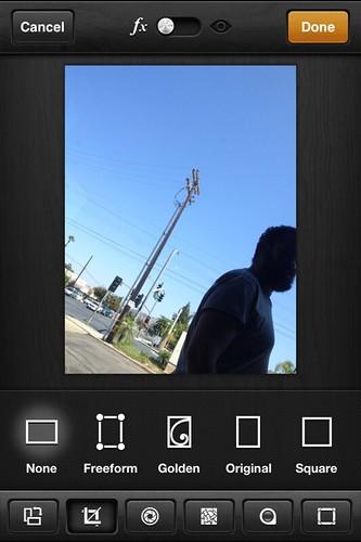 Camera Roll-3314