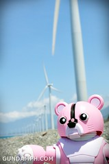 Pink Bearguy at Bangui Windmill Beach