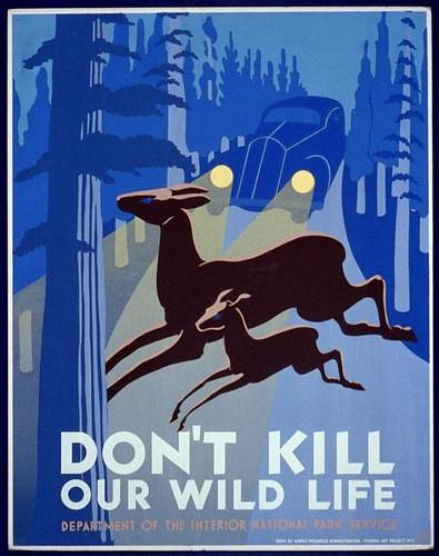 Don't kill our wild life (LOC)