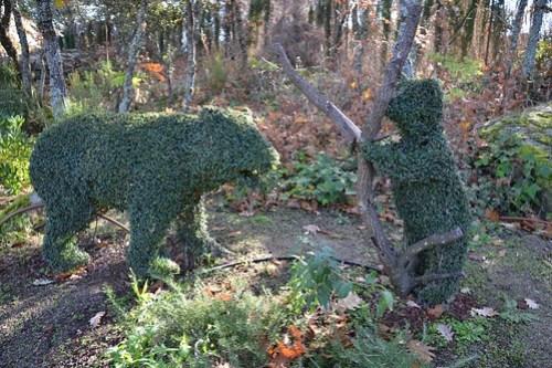 Osos, El Bosque Encantado
