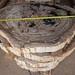 versteinertes Holz Platten