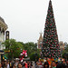 Hong Kong Disneyland Christmas Tree
