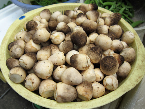 Fresh Straw Mushrooms
